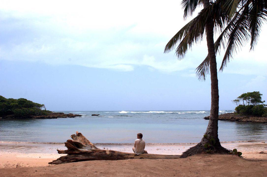 Der Rockstar Jason Masters (Chris Carmack) strandet auf einer einsamen Insel. Was er nicht weiß: Die Insel ist nicht so einsam, wie er glaubt ... - Bildquelle: Media 8 Entertainment