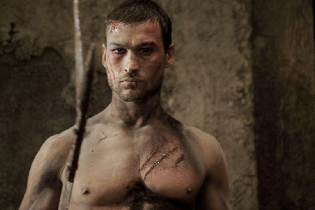 Weil Spartakus (Andy Whitfield) durch die Niederlage gegen Crixus die Zuneigung der Menge verloren hat, verbannt ihn Batiatus in die Höhlen der Unt... - Bildquelle: 2010 Starz Entertainment, LLC