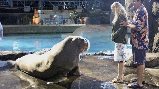 Um Lucys (Drew Barrymore, l.) Herz zu erobern, muss Henry (Adam Sandler, r.)...