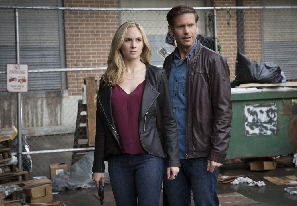Während Alaric (Matthew Davis, r.) und Caroline (Candice King, l.) wieder in den Bann des Übernatürlichen gezogen werden, erkennt Stefan, warum Matt... - Bildquelle: Warner Bros. Entertainment, Inc.