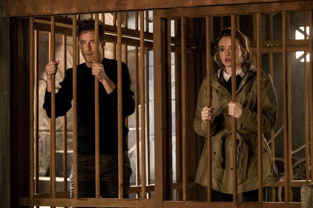 Eigentlich hat Caitlin (Danielle Panabaker, r.) ein gutes Verhältnis zu Grodd, doch auch sie muss sich eingestehen, dass Harrys (Tom Cavanagh, l.) E... - Bildquelle: 2016 Warner Bros.
