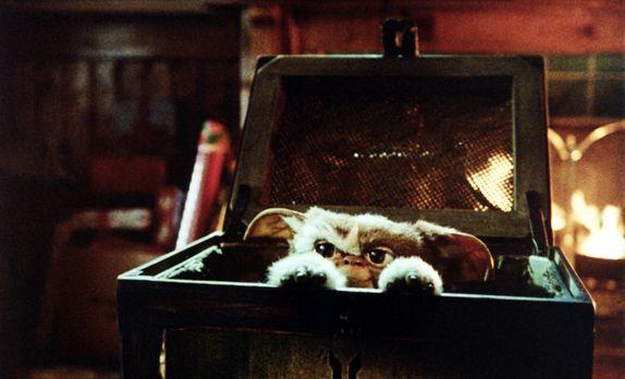 Gremlins - Kleine Monster - Das geheimnisvolle Geschenk entpuppt sich als ein...