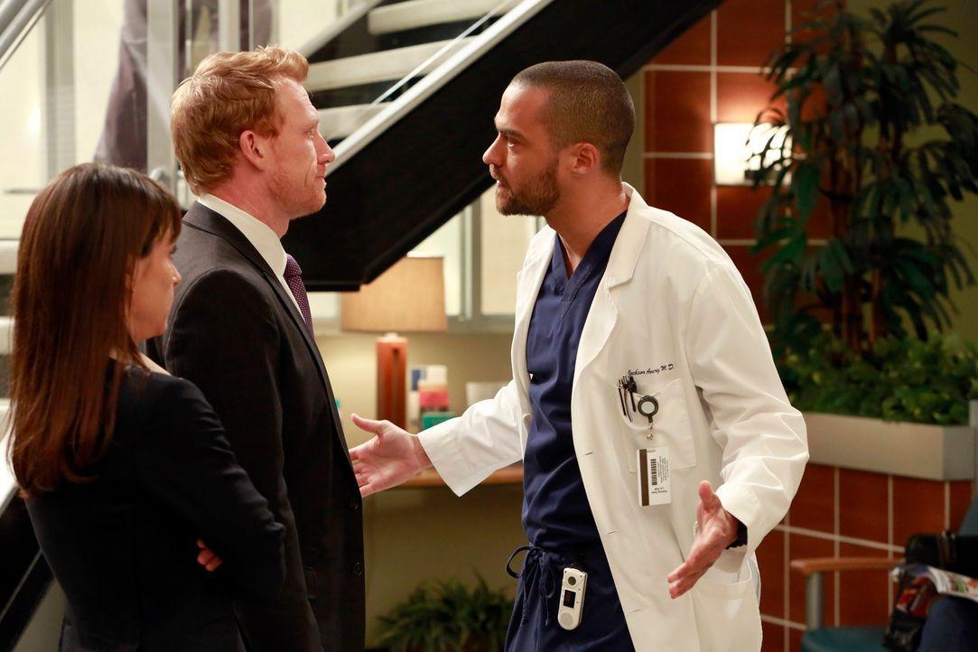 Sind sich nicht einig: Dr. Cahill (Constance Zimmer, l.), Owen (Kevin McKidd, M.) und Jackson (Jesse Williams, r.) ... - Bildquelle: ABC Studios