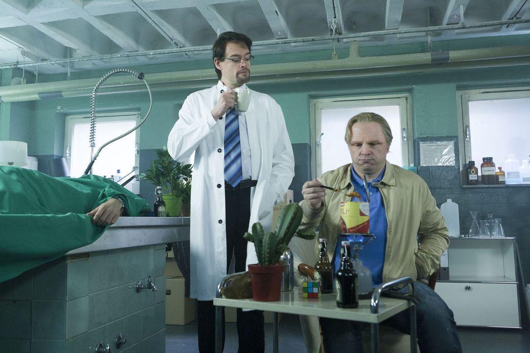Zwischen eingelegten Embryos und abgedeckten Leichen richtet sich Kommissar Thiel (Martin Klempnow, r.) ein neues Zuhause ein. Sein Vermieter Boerne... - Bildquelle: Kai Schulz ProSieben