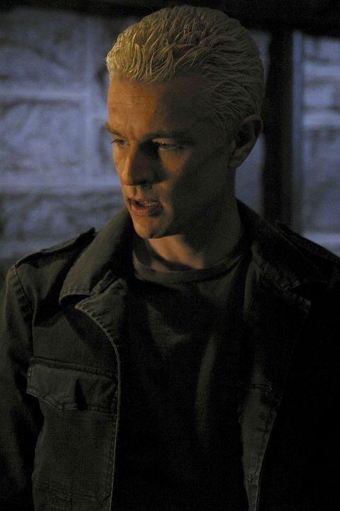 Die Initiative hat beschlossen, Spike (James Marsters) den Chip zu entfernen. - Bildquelle: TM +   Twentieth Century Fox Film Corporation. All Rights Reserved.