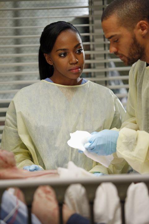 Kümmern sich um ein Verkehrsunfallopfer: Stephanie (Jerrika Hinton, l.) und Jackson (Jesse Williams, r.) ... - Bildquelle: ABC Studios