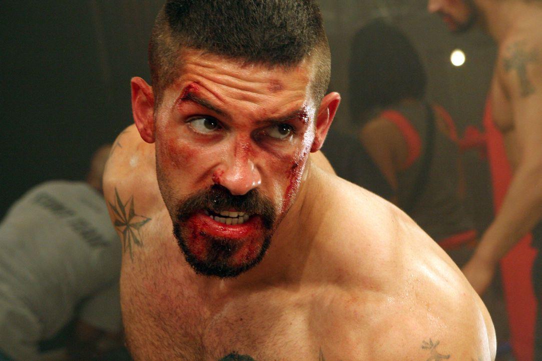 Im Visier eines hemmungslosen Gegners: Knastfighter Boyka (Scott Adkins) ... - Bildquelle: Nu Image