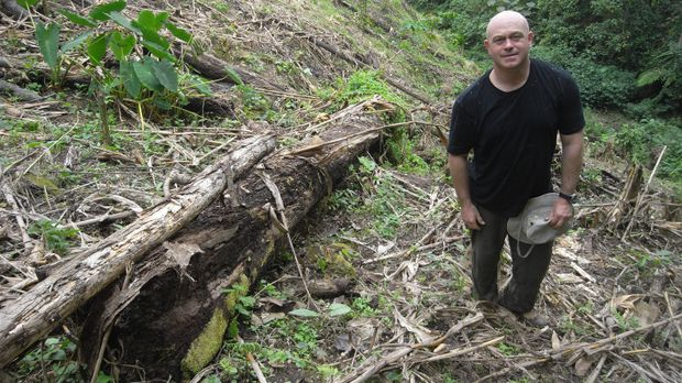 Ross Kemp zeigt, wie die globale Nachfrage nach Kokain zur Abholzung des Rege...