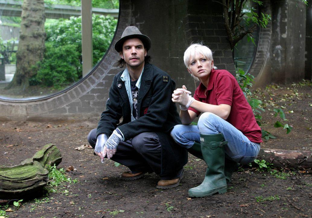 Auf der Suche nach Spuren: Abby (Hannah Spearritt, r.) und Connor (Andrew Lee Potts, l.) ... - Bildquelle: ITV Plc