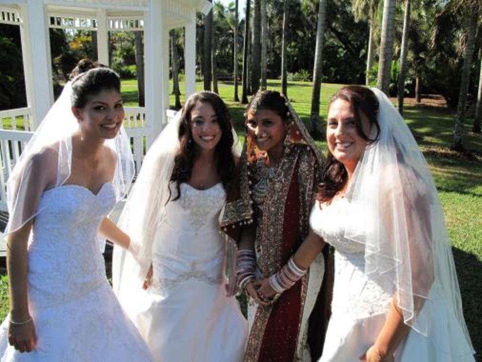 Vier Bräute treten an, im Wettkampf um das schönste Hochzeitsfest: Karen (r.), Vidya (2.v.r.), Maria (2.v.l.) und Nataly (l.) - Bildquelle: 2009 Discovery Communications, LLC
