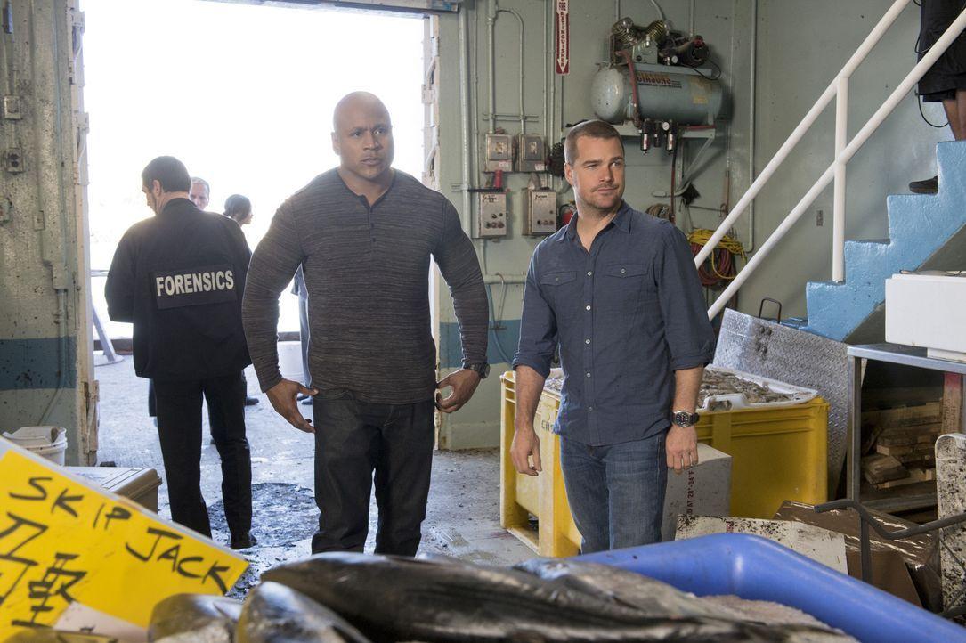 Ermitteln in einem neuen Fall: Sam (LL Cool J, M.) und Callen (Chris O'Donnell, r.) ... - Bildquelle: CBS Studios Inc. All Rights Reserved.