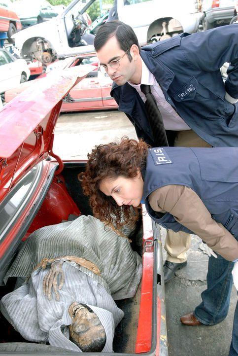 Grausiger Fund: Marcus (Mathis Künzler, l.) und Judith (Proschat Madani, r.) betrachten die Leiche, die im Kofferraum eines Autowracks gefunden wurd... - Bildquelle: Christoph Assmann Sat.1