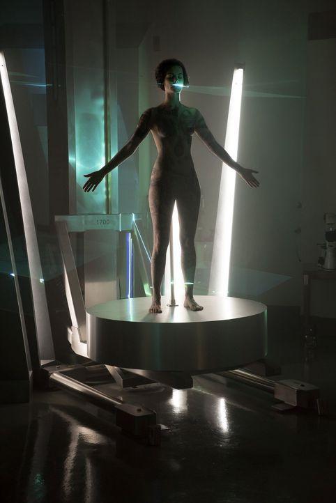 Was steckt hinter ihren ganzen Tattoos? Das FBI ermittelt, um das Geheimnis um Jane Doe (Jaimie Alexander) zu lüften. Doch das ist keine leichte Auf... - Bildquelle: Warner Brothers