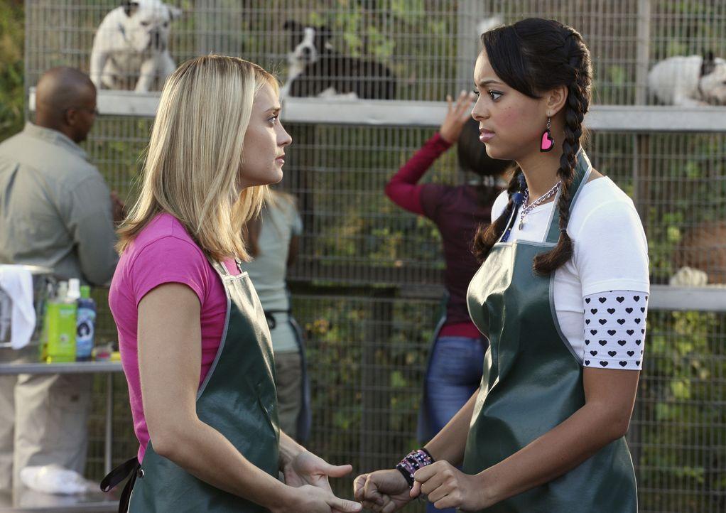 Leisten freiwillige Sozialarbeit im Tierheim ab: Casey (Spencer Grammer, l.) und Ashleigh (Amber Stevens, r.) ... - Bildquelle: ABC Family