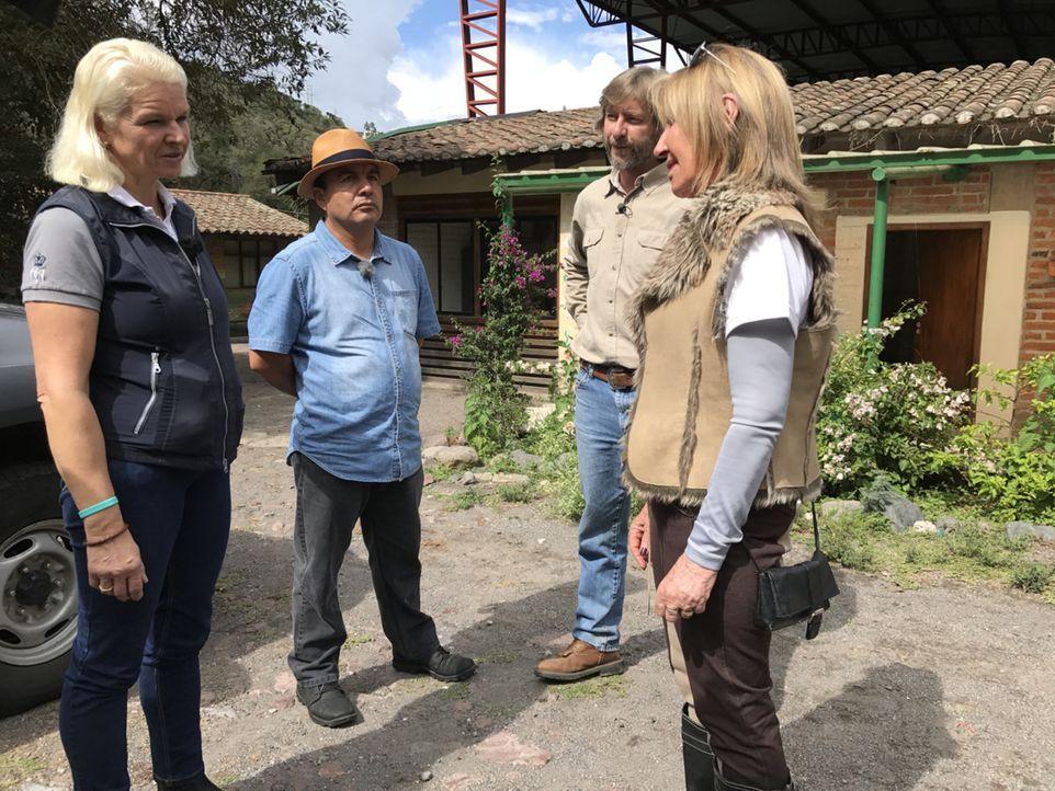 Carmen (l.), Reiseführer Marco (2.v.l.) und Pferdeflüsterer Juan Bermeo (2.v.r.) statten Heidi Paliz (r.) und ihrem Reittherapiezentrum für Kinder A... - Bildquelle: kabel eins