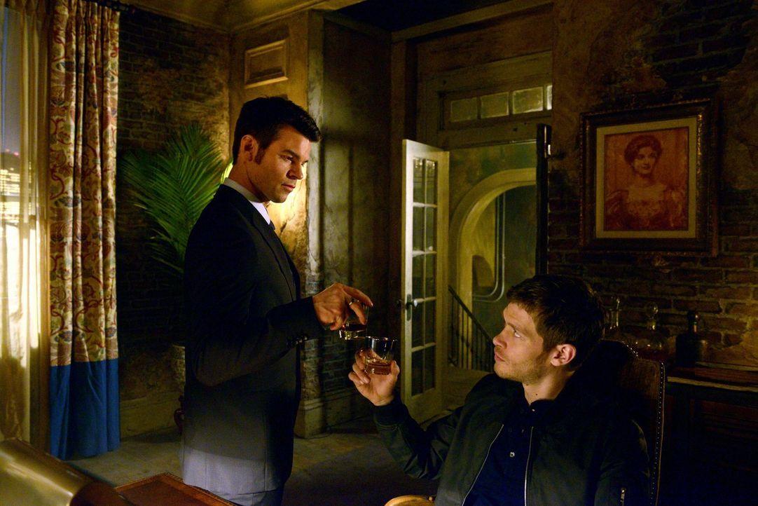 Klaus (Joseph Morgan, r.) und Elijah (Daniel Gillies, l.) kämpfen an unterschiedlichen Fronten ... - Bildquelle: Warner Bros. Television