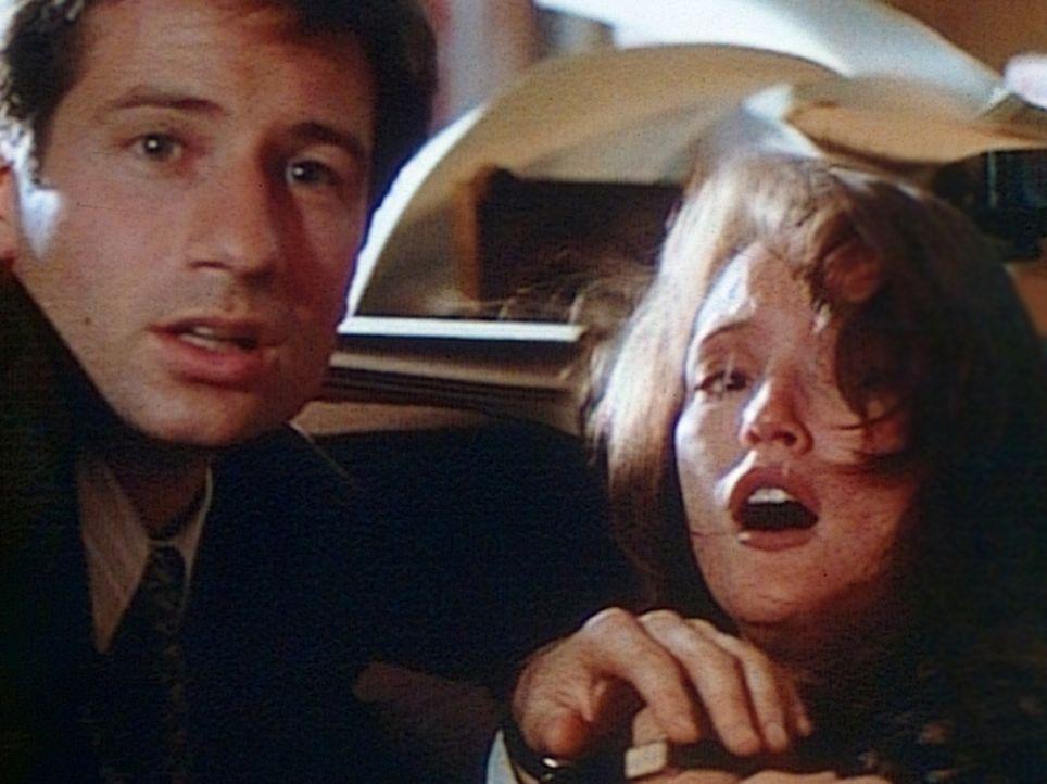 Der FBI-Agent Fox Mulder (David Duchovny, l.) und Lauren (Lisa Waltz, r.) werden Augenzeugen, wie ein Geist Rache nimmt. - Bildquelle: TM +   Twentieth Century Fox Film Corporation. All Rights Reserved.