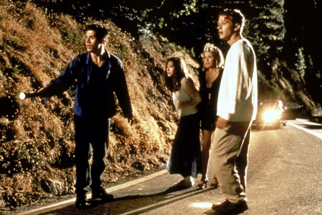 Die vier Freunde Julie (Jennifer Love Hewitt, 2.v.l.), Helen (Sarah Michelle Gellar, 2.v.r.), Barry (Ryan Phillippe, r.) und Ray (Freddie Prinze Jr.... - Bildquelle: Columbia Pictures