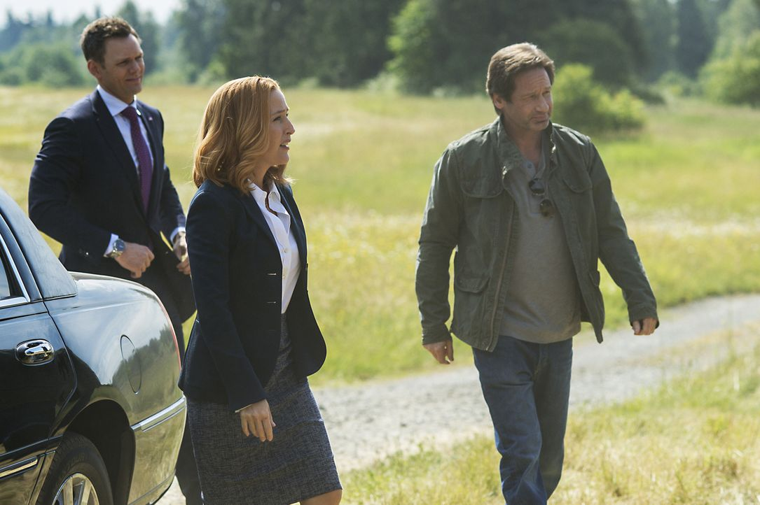 Zusammen mit dem TV-Moderatoren Tad O'Malley (Joel McHale, l.) beginnen die Agenten Scully (Gillian Anderson, M.) und Mulder (David Duchovny, r.) mi... - Bildquelle: Ed Araquel 2016 Fox and its related entities.  All rights reserved.