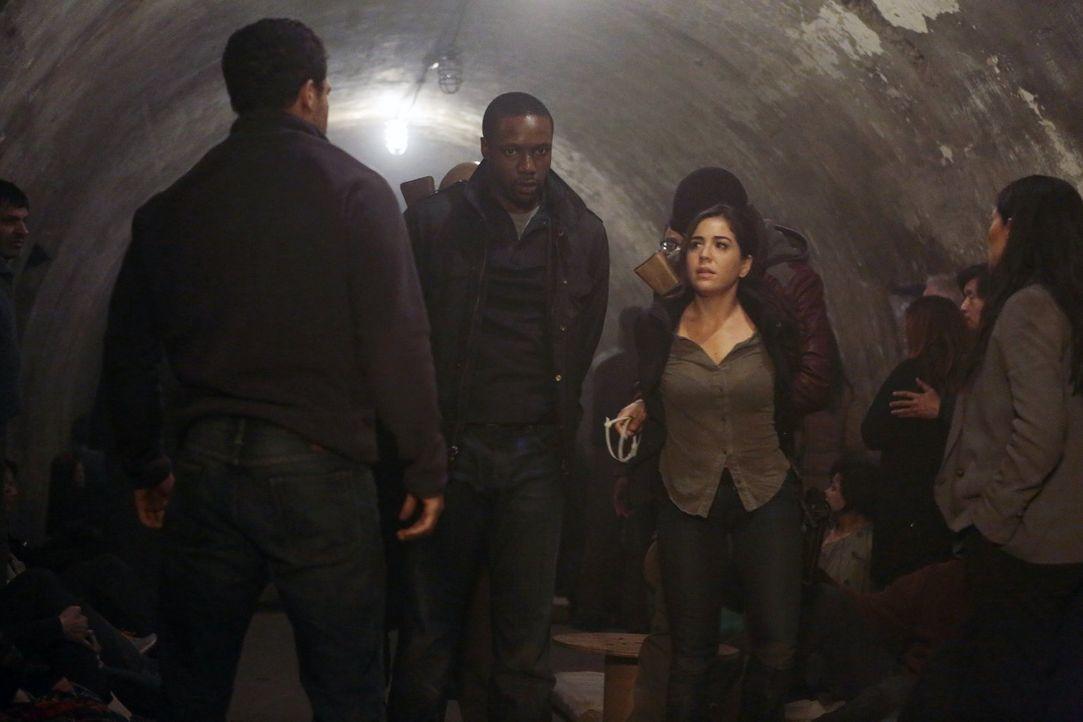 Geraten in die Hände von skrupellosen Terroristen: Reade (Rob Brown, l.) und Zapata (Audrey Esparza, r.) ... - Bildquelle: Warner Brothers