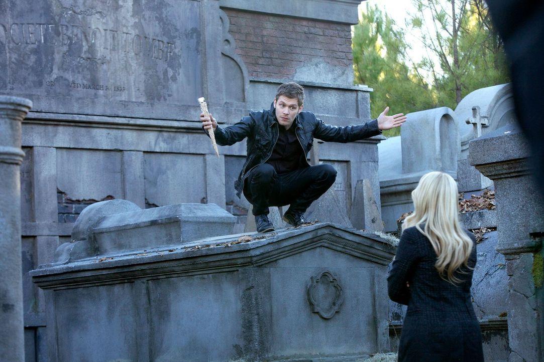 Alle Geschwisterliebe, die es jemals zwischen Rebekah (Claire Holt, r.) und Klaus (Jospeh Morgan, r.) gab, scheint wie ausgelöscht. Doch wird Klaus... - Bildquelle: Warner Bros. Television