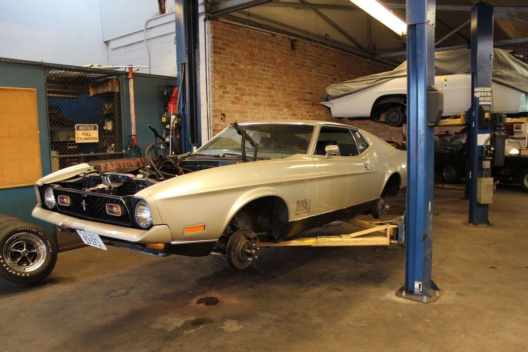 """Kunde George bringt seine geliebten 1971er Mustang """"Mach 1"""" in die Werkstatt, doch Dan von Fantomworks hat schlechte Nachrichten für ihn - das Getri... - Bildquelle: New Dominion Pictures LLC."""