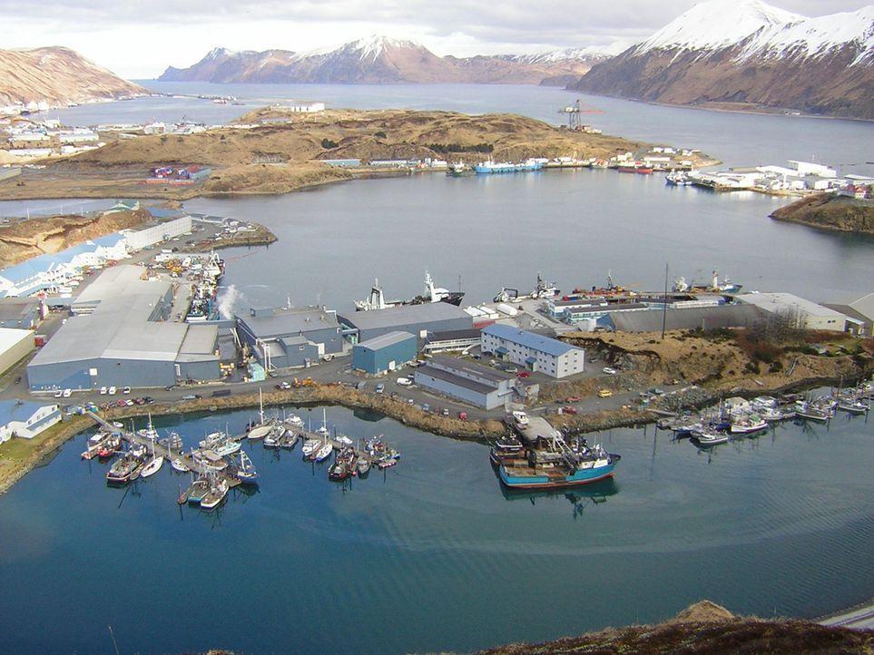 """Die Beringsee zwischen Alaska und Sibirien ist das fischreichste Gewässer der Welt. """"Moderne Wunder"""" begleitet Kapitän Scott Symonds und seine Manns... - Bildquelle: Tom Giacolone"""