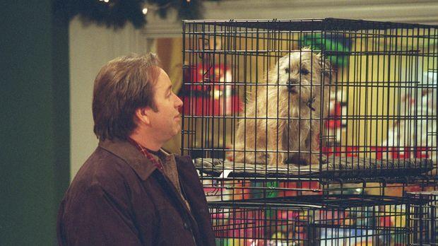 Von Kerrys Weihnachtswunsch ist Paul (John Ritter) durchaus nicht begeistert...
