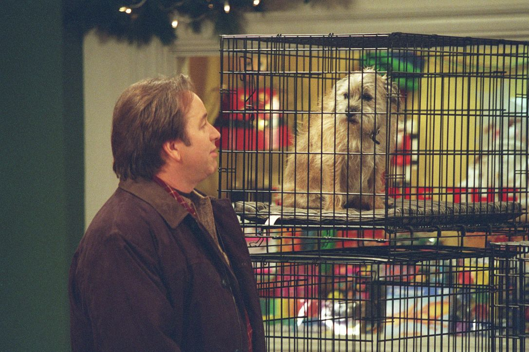 Von Kerrys Weihnachtswunsch ist Paul (John Ritter) durchaus nicht begeistert ... - Bildquelle: ABC, Inc.