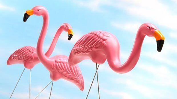 Drei Flamingos aus Plastik vor blauem Hintergrund