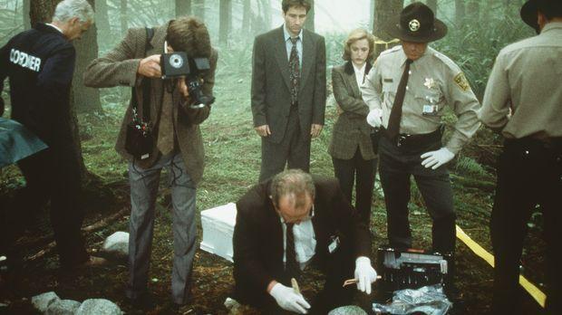 Die örtliche Polizei und die beiden FBI-Agenten Scully (Gillian Anderson, Mit...