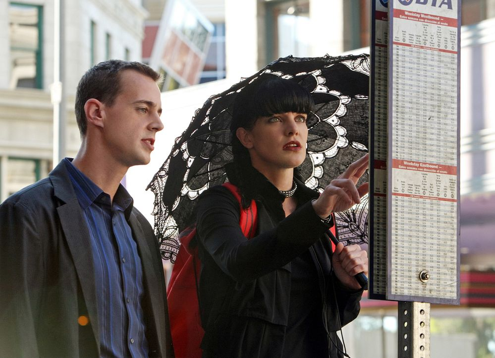 Arbeiten an einem neuen Fall: Abby (Pauley Perrette, r.) und McGee (Sean Murray, l.) ... - Bildquelle: CBS Television