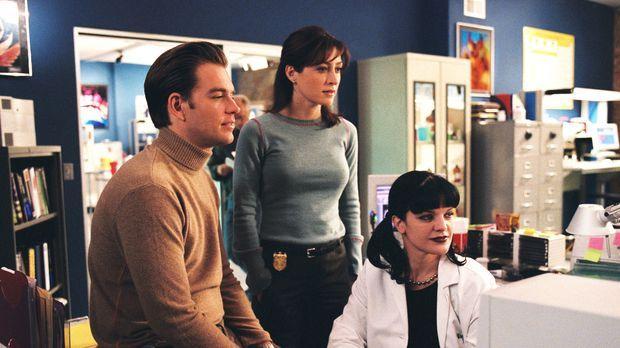 Stehen vor einem Rätsel: Tony (Michael Weatherly, l.), Kate (Sasha Alexander,...