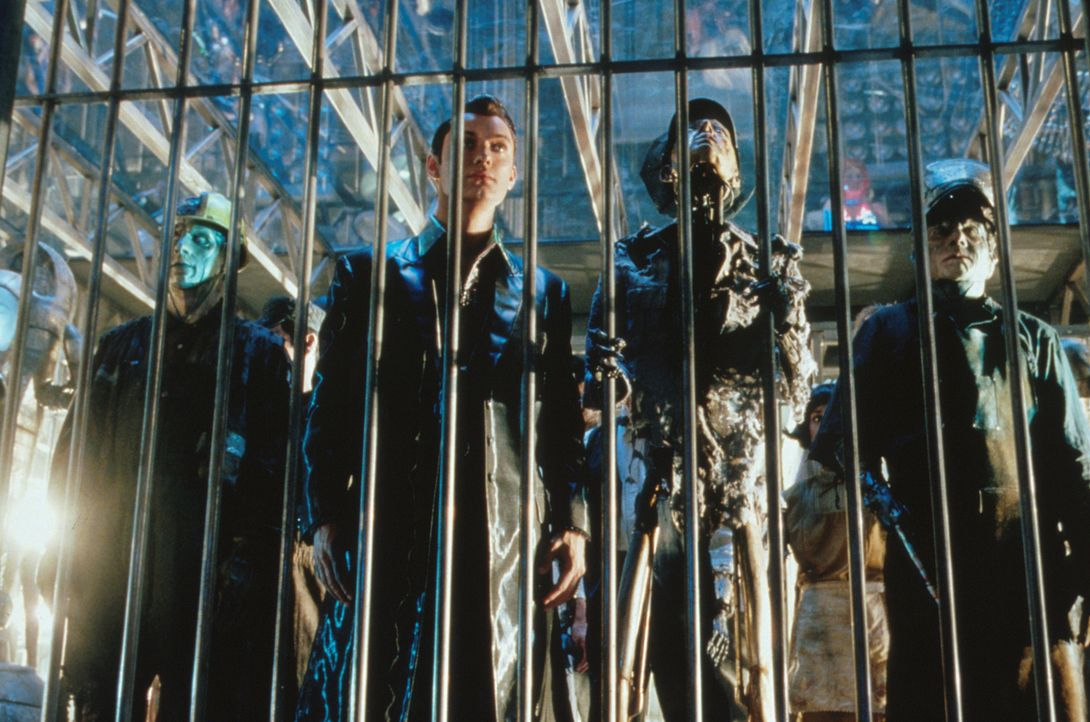 Nach seiner Ausmusterung als Sexroboter wird Gigolo Joe (Jude Law, M.) an seinen Erbauer Cybertronics zurückgegeben zur Demontage. Doch dem liebens... - Bildquelle: David James TM &   2001 Warner Bros. and Dreamworks, LLC. (ALL RIGHTS RESERVED)