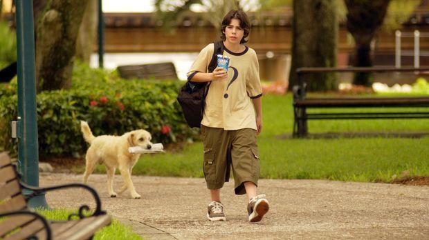Verspottet von seinen Mitschülern wandert Zach Dylan (Sammy Kahn) traurig dur...