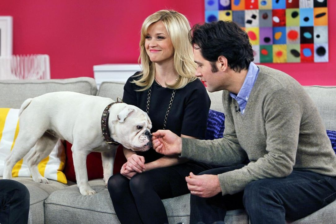 fruehstuecksfernsehen-studiohund-lotte-in-action-im-studio-109 - Bildquelle: Ingo Gauss