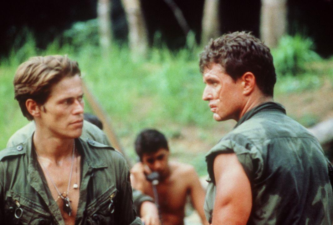 Todfeinde inmitten eines mörderischen Krieges: Sergeant Elias (Willem Dafoe, l.) und Sergeant Barnes (Tom Berenger, r.)  ... - Bildquelle: Orion Pictures Corporation