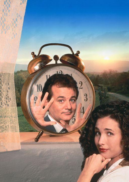 Der in eine Zeitschleife geratene Phil Connors (Bill Murray, l.) hat keine Ahnung, dass Rita Hanson (Andie MacDowell, r.) die Lösung seines Problem... - Bildquelle: Columbia TriStar