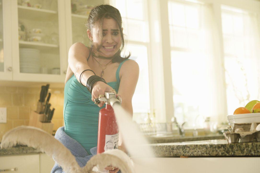 Als Lola (Sofia Carson) einen Job als Babysitterin annimmt, ahnt sie nicht, dass ihr die längste und turbulenteste Nacht bevorsteht ... - Bildquelle: Ed Araquel 2015 Disney Enterprises, Inc. All Rights Reserved.