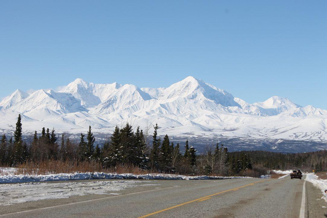 Weit und breit keine Nachbarn - ausgerechnet in der Wildnis Alaskas möchte sich Familie White samt Kindern niederlassen. Doch ist das wirklich eine... - Bildquelle: 2015, DIY Network/Scripps Networks, LLC. All Rights Reserved.