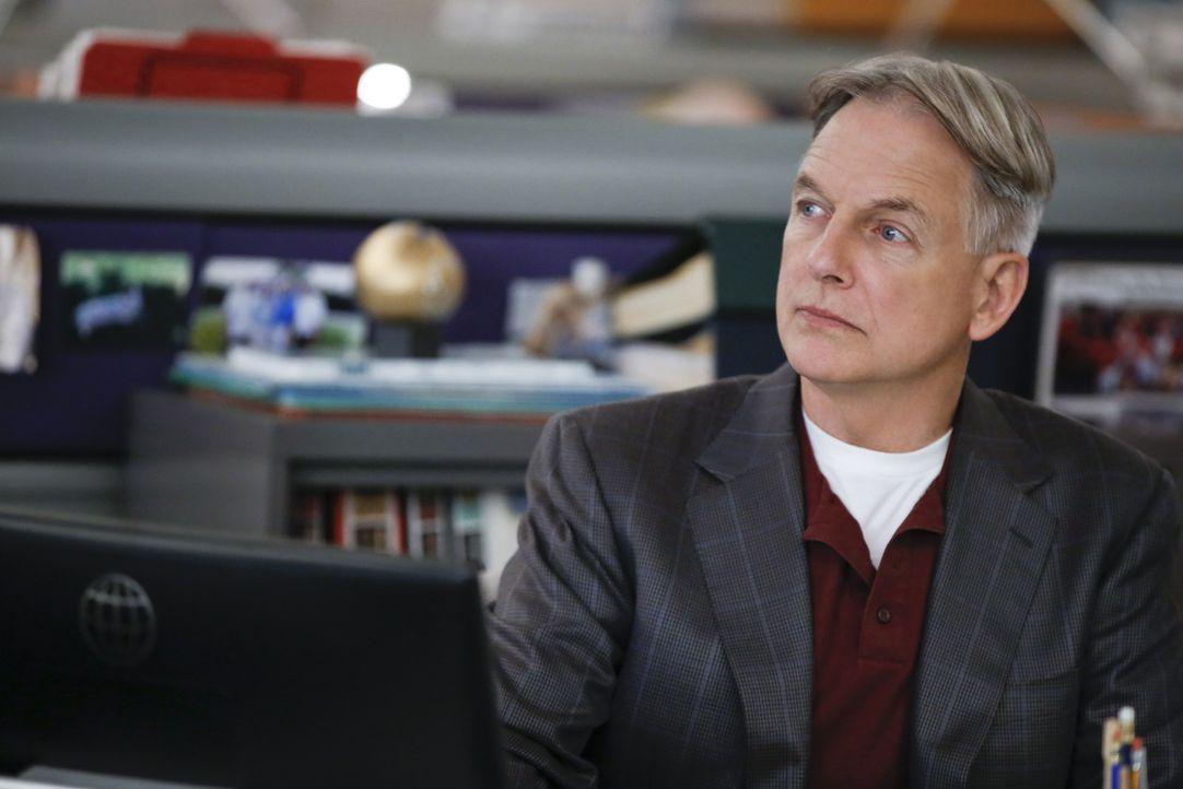 Noch stehen Gibbs (Mark Harmon) und sein Team vor einem Rätsel. Doch sie versuchen alles, um den aktuellen Fall zu lösen ... - Bildquelle: Cliff Lipson CBS Television