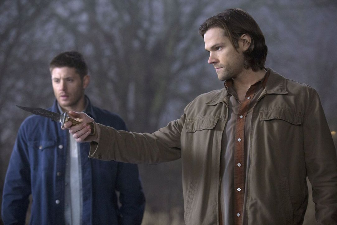 Stoßen bei der Suche nach der ersten Klinge auf die Männer der Schriften: Sam (Jared Padalecki, r.) und Dean (Jensen Ackles, l.) ... - Bildquelle: 2013 Warner Brothers