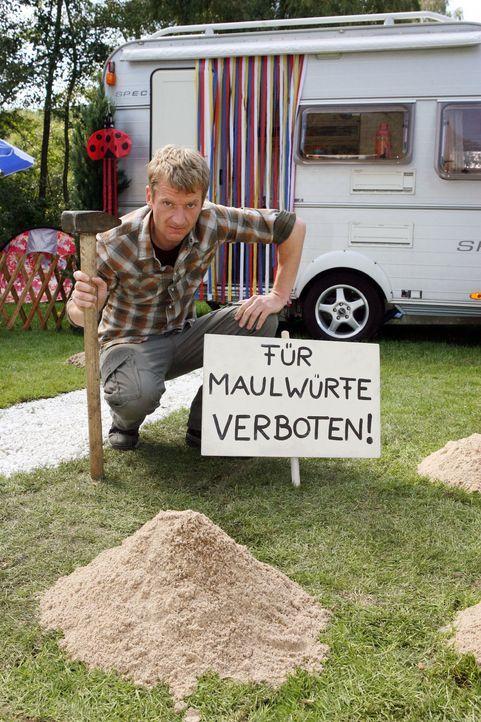 Zu den Dinge, die Sie nicht tun sollten, wenn Sie Maulwürfe im Garten haben, gehört auch das Aufstellen eines Verbotsschilds (Michael Kessler) ... - Bildquelle: Ralf Jürgens Sat.1