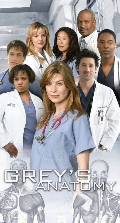 (1. Staffel) - Gemeinsam machen sie sich daran, den unberechenbaren Krankenhausalltag zu meistern: (vorne v.l.n.r.) Dr. Miranda Bailey (Chandra Wils... - Bildquelle: Touchstone Television