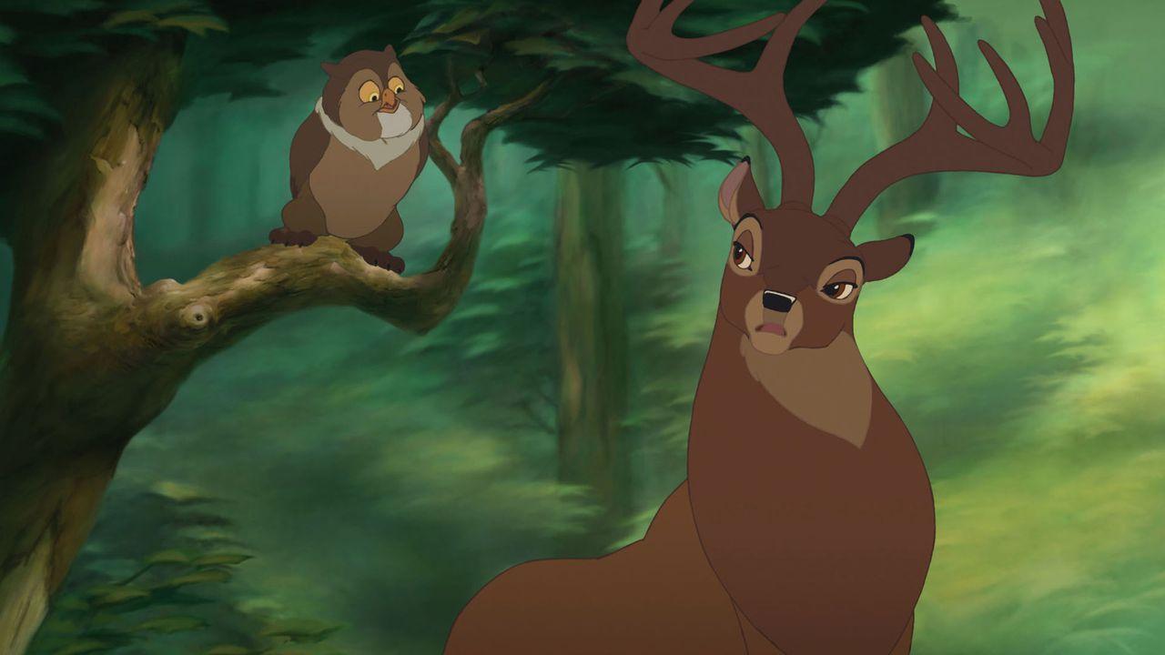 Als Bambis Mutter stirbt, liegt es nun an seinem Vater (r.), dem Herrn der Wälder, Bambi alleine großzuziehen, doch der fühlt sich der Aufgabe ni... - Bildquelle: Disney  All rights reserved