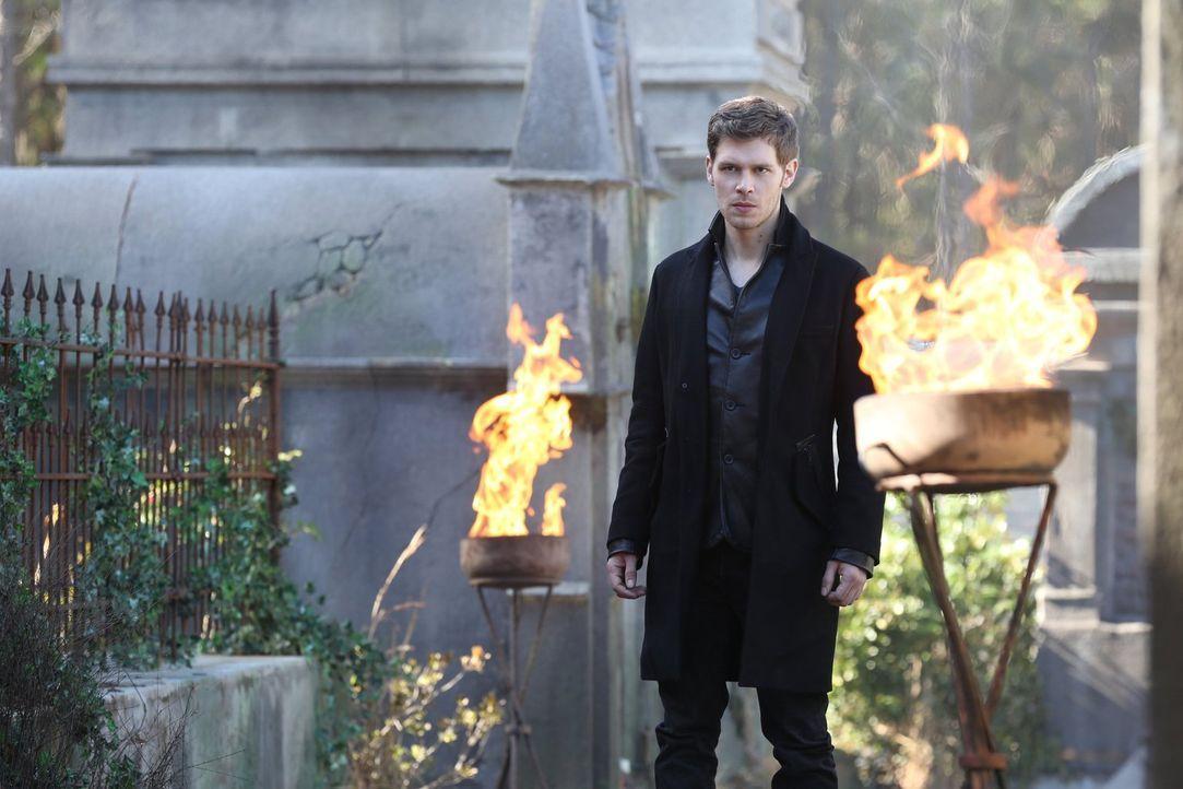 Eigentlich wollte Klaus (Joseph Morgan) Finn ein für alle Mal aus dem Spiel nehmen, doch dann bekommt er ein verlockendes Angebot ... - Bildquelle: Warner Bros. Entertainment, Inc