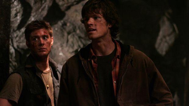 Sam (Jared Padalecki, r.) und Dean Winchester (Jensen Ackles, l.) folgen weit...