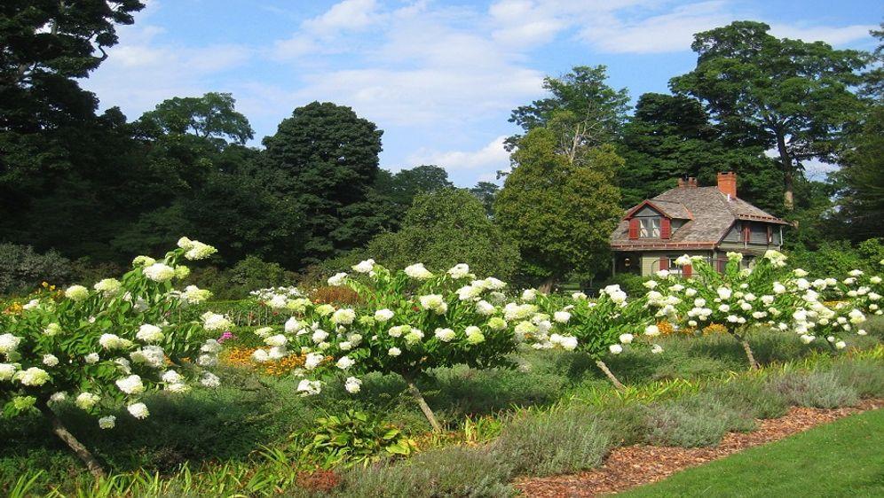 Hanggarten Gestalten Diese Blumen Eignen Sich Sat 1 Ratgeber