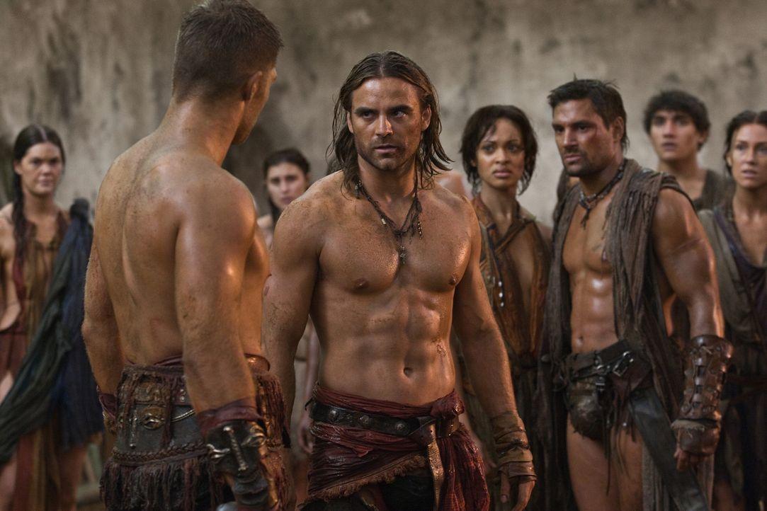 Während Crixus ( Manu Bennett, r.) und Naevia (Cynthia-Addai Robinson, 2.v.r.) noch überlegen, ob sie sich unabhängig von Spartacus'(Liam McIntyr... - Bildquelle: 2011 Starz Entertainment, LLC. All rights reserved.