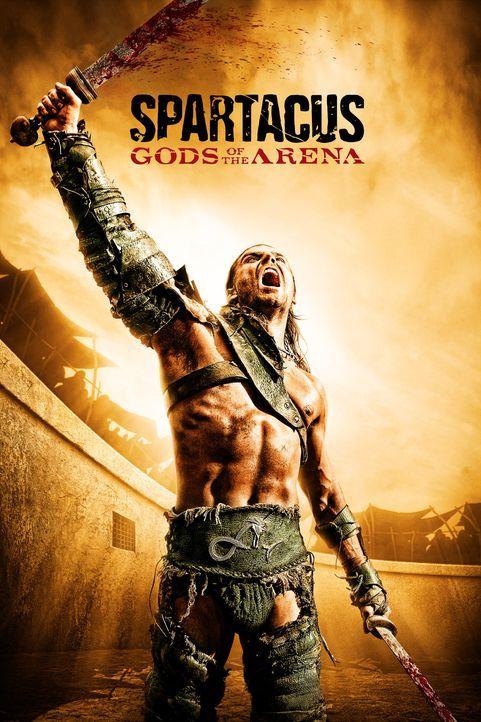 Champion der Gladiatorenschule: Gannicus (Dustin Clare) ... - Bildquelle: 2010 Starz Entertainment, LLC